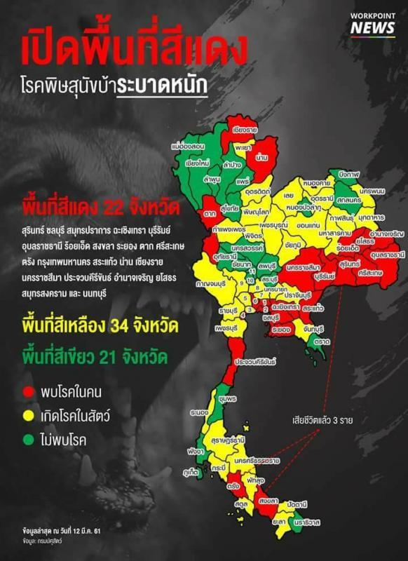 Бешенство в Таиланде